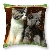 Kitten Smells Something Good Throw Pillow