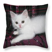 Kitten Snow White On Green And Pink Plaid Throw Pillow