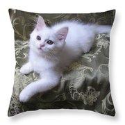 Kitten Snow White Silky Fur Throw Pillow