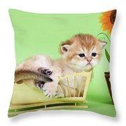Kitten With Flover Throw Pillow
