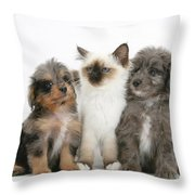 Kitten With Puppies Throw Pillow