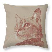 Kitten Wonder Throw Pillow
