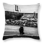 Kitty Across The Street Black And White Throw Pillow