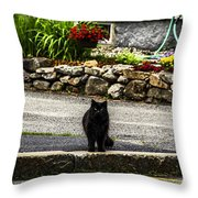 Kitty Across The Street  Throw Pillow