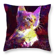 Kitty Cat Kitten Pet Animal Cute  Throw Pillow