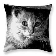 Kitty In Black White Throw Pillow