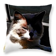 Kitty In The Shadow Throw Pillow