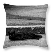 Kitty In The Street Black And White Throw Pillow