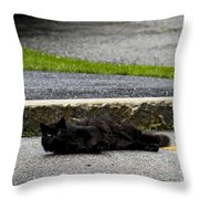 Kitty In The Street Throw Pillow