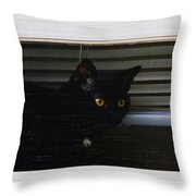Kitty In The Window 2 Throw Pillow