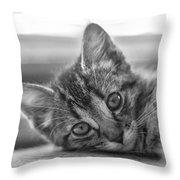 Kitty Nap Throw Pillow