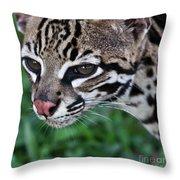 Kitty Ocelot 1 Throw Pillow