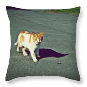 Kitty On The Prowl Throw Pillow