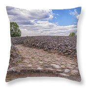 Kiviksgraven Throw Pillow