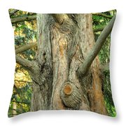 Knarled Throw Pillow