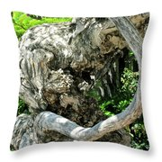 Knarly Man Throw Pillow