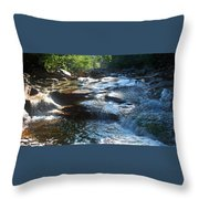 Knee Deep In Mountain Water Throw Pillow