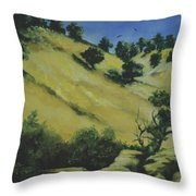 Knights Ferry 1 Throw Pillow