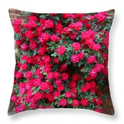 Knockout Red Rosebush Throw Pillow
