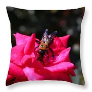 Knockout Rose And Bumblebee Throw Pillow