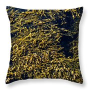 Knotted Wrack Seaweed Floating Atop Throw Pillow