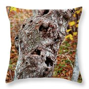 Knotty Throw Pillow