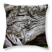 Knotty Tree Throw Pillow