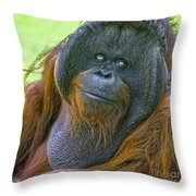 Knowing Smile Throw Pillow