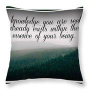 Knowledge You Seek Throw Pillow