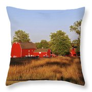 Knox Farm 5194 Throw Pillow