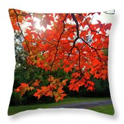 Knox Park 8444 Throw Pillow by Guy Whiteley