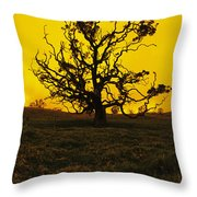 Koa Tree Silhouette Throw Pillow