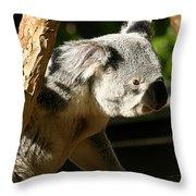 Koala Bear 2 Throw Pillow