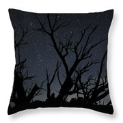 Kodachrome Basin Night Sky 2963 Throw Pillow