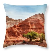 Kodachrome Park Colorful Desert Beauty In Spring. Throw Pillow