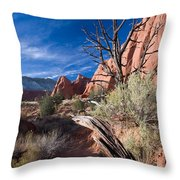 Kodachrome Sunset Throw Pillow