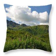 Kodiak Greenery Throw Pillow
