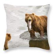Kodiak Lunch Break Throw Pillow
