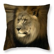 Kofi Throw Pillow
