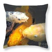 Koi Fish 5 Throw Pillow