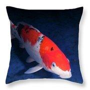 Koi Handpick Pool Throw Pillow