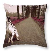 Kokkie On The Autumn Alley Of Rhoon Throw Pillow