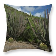 Koko Crater Cacti Throw Pillow