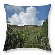 Koko Crater Trail Throw Pillow