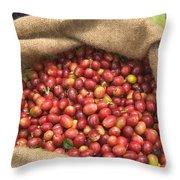 Kona Coffee Bean Harvest Throw Pillow