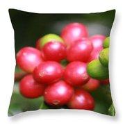 Kona Coffee Throw Pillow