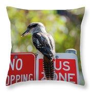 Kookaburra On A Road Sign Throw Pillow