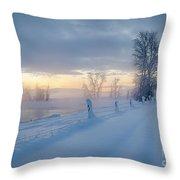 Kootenai River Road Throw Pillow