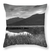 Kootenay Marshes In Black And White Throw Pillow