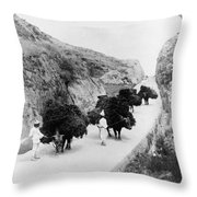Korea: Farmers, C1904 Throw Pillow